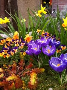 Beginning signs of springtime--
