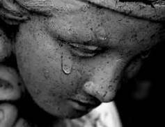 """Embrace all Emotions"" --Buddha"